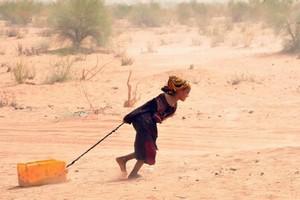 Mauritanie: le manque de pluies accroît les risques de malnutrition