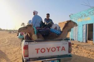 """""""Les routes de l'impossible"""" - « Mauritanie, les convoyeurs du désert », vendredi 28 août sur France 5"""