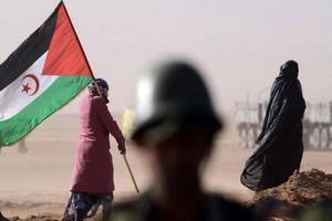 Le dossier du Sahara occidental devant la Cour européenne de justice