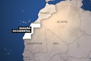 Sahara occidental: la régionalisation au menu du 2e jour de réunion à Genève