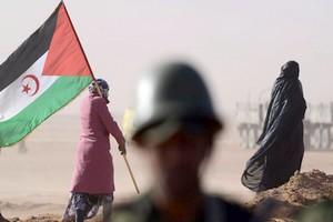 Sahara occidental: le dossier qui complique la vie de l'Union africaine