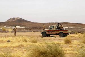 L'attaque meurtrière dans une réserve naturelle au Niger renforce l'instabilité du Sahel