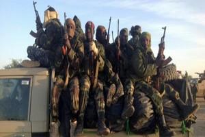 Au moins 37 femmes enlevées et 9 personnes tuées par Boko Haram au Niger