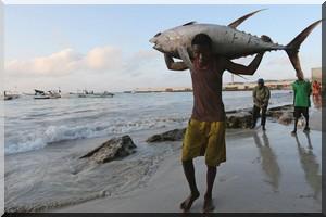 Préserver les stocks de poisson pour renforcer la résilience climatique sur les côtes africaines