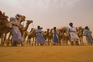 Les touristes bientôt de retour en Mauritanie ?