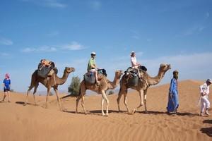 Mauritanie : près de 1000 touristes dans la région de l'Adrar