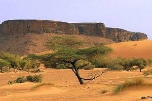 Adrar: La saison touristique 2017/2018, rapporte à la Mauritanie plus d'un million d'Euros…un bon(d) départ!!!