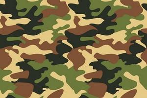 Manuel pour comprendre les militaires : militaires d'en haut, militaires d'en bas. Par Pr ELY Mustapha