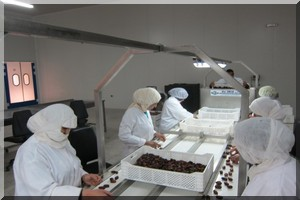 Mauritanie: bientôt une usine de conditionnement de dattes/légumes à Adrar