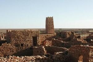 Mauritanie: début de la 8e édition du Festival des villes anciennes